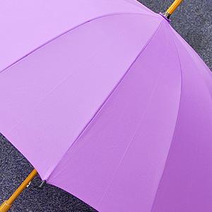 咲く前の傘